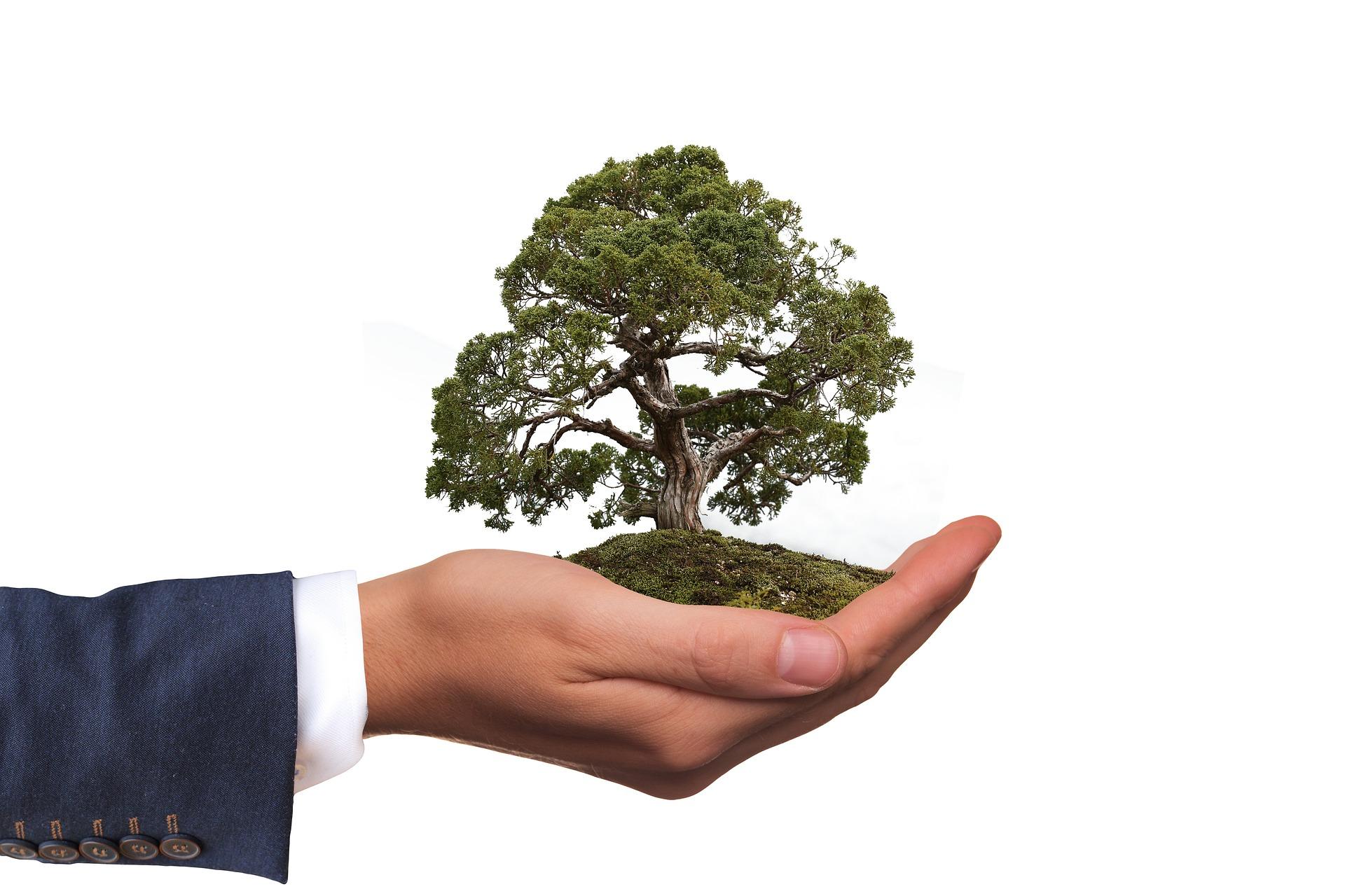 Процена утицаја на животну средину