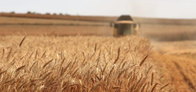 Jaвни оглас за давање у закуп и на коришћење пољопривредног земљишта у државној својини 3